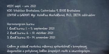 Bobath koncept – vyšetrenie a liečba dospelých s neurologickým ochorením